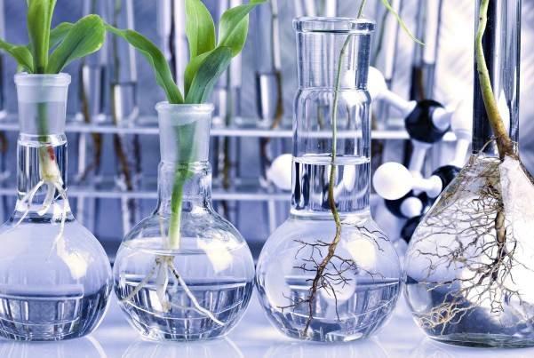 قانون ایمنی زیستی نیازمند اصلاح