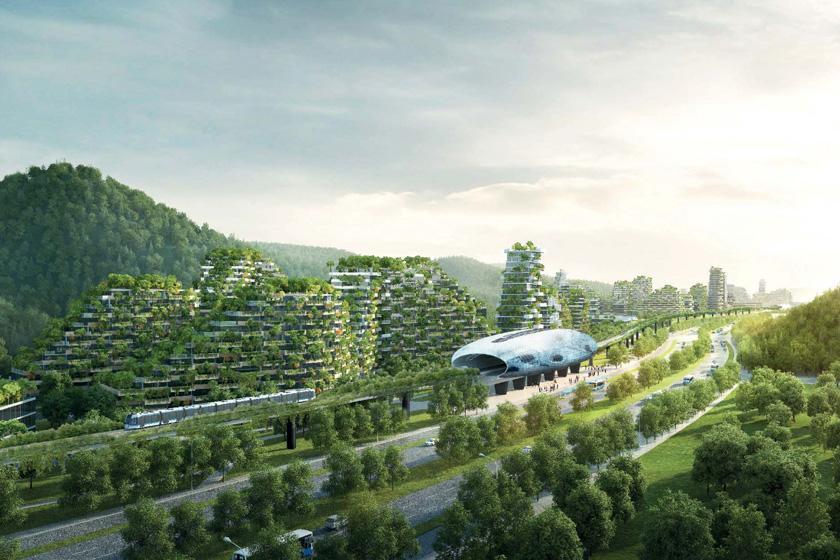 با شهر جنگلی چین آشنا شوید